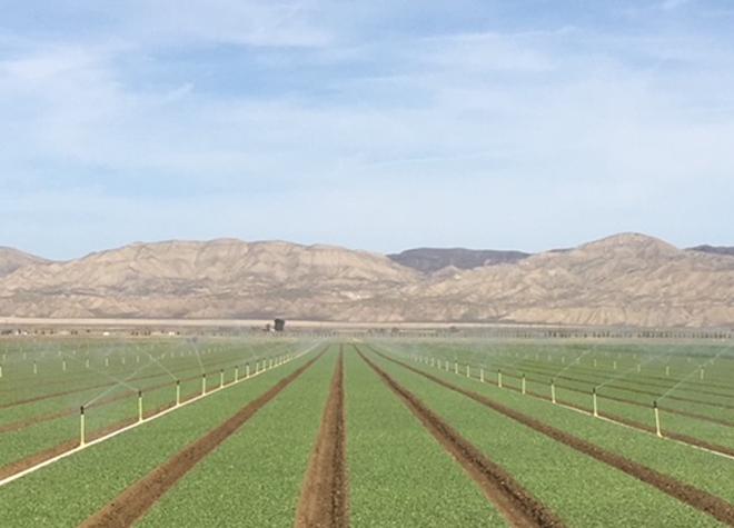 Plantación y siembra de Trimble